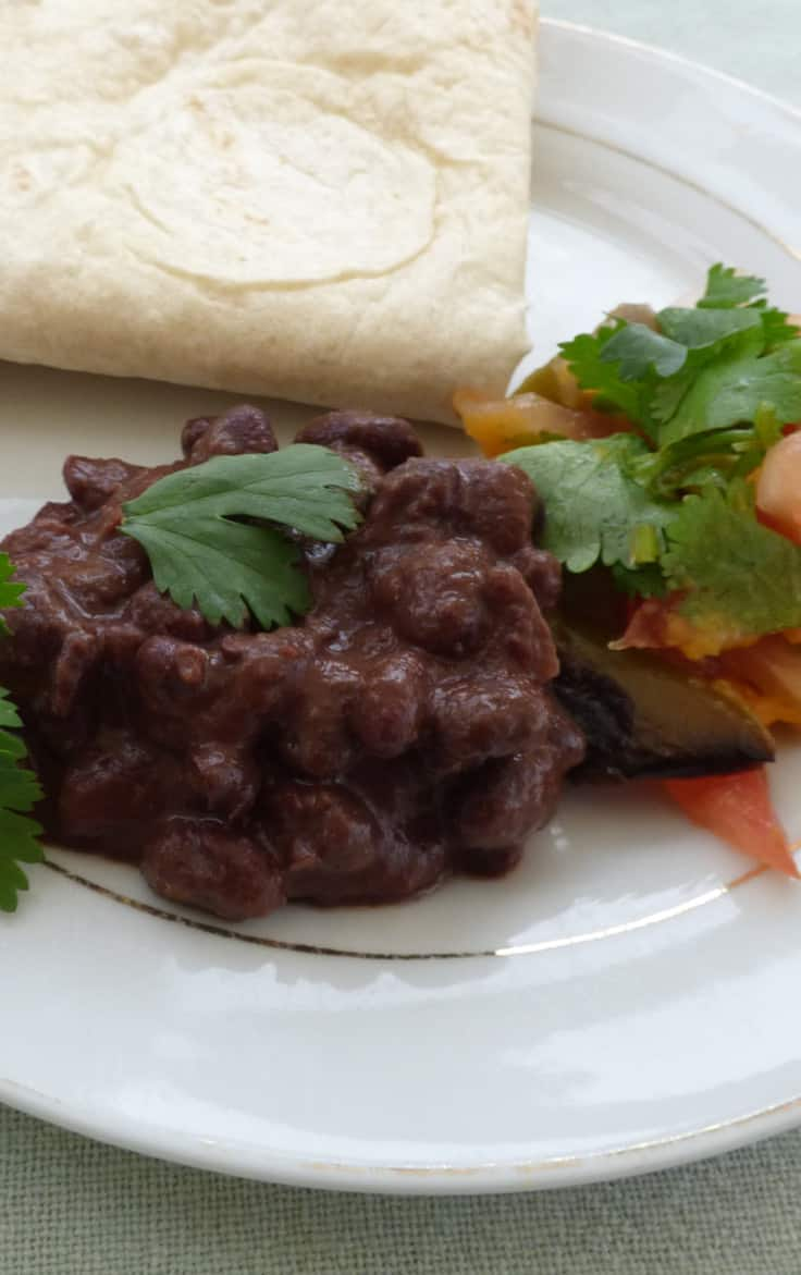 Slow cooker black bean mole with folded tortilla and roast red pepper salsa, from busylizziecooks.com